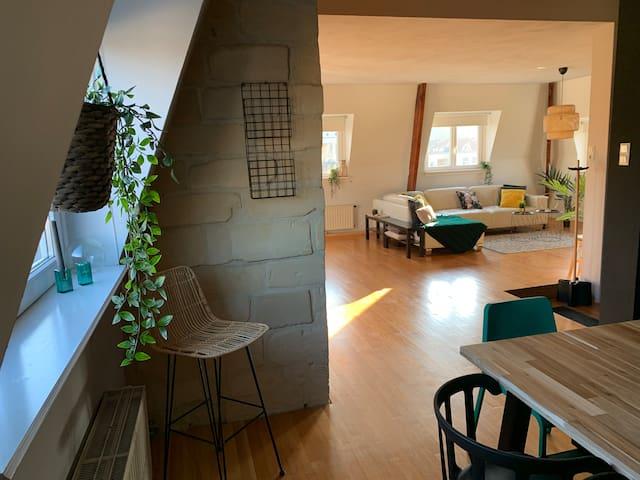 Nieuw gerenoveerd groot loft
