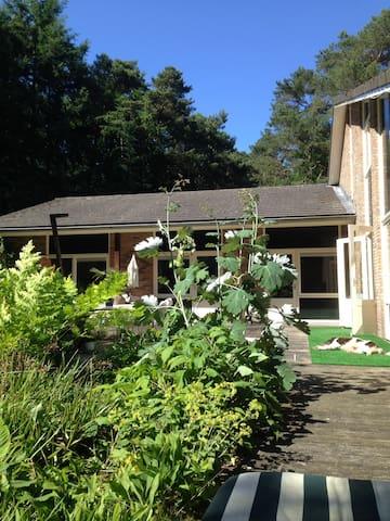 Mooie vrijstaande villa aan bosrand - フェルウェ - 別荘