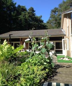 Mooie vrijstaande villa aan bosrand - Veluwe - Huvila