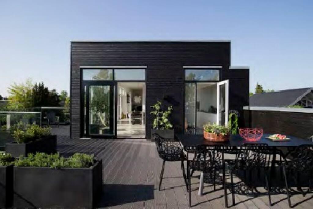 Stor tagterrasse med udgang fra køkken og alrum