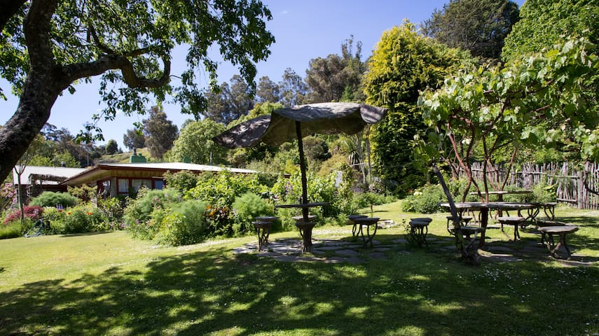 one of the outside area where you can sit in the shadow under the grapes vines.