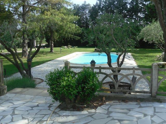 """gite """"l'oranger"""", jardin et piscine"""