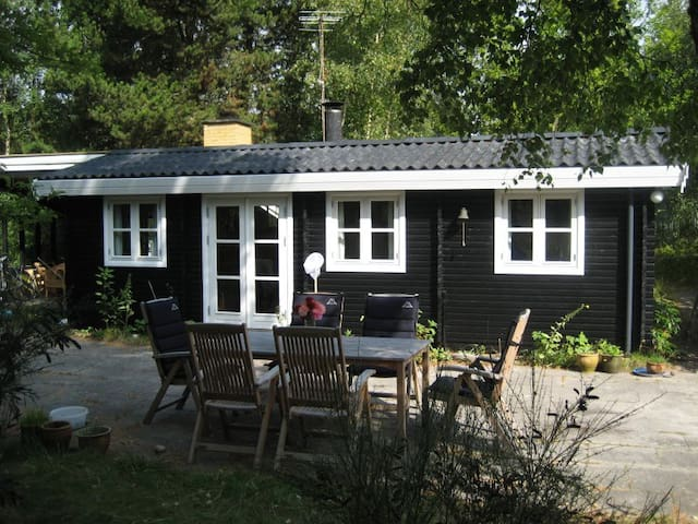 Sommerhus ved Danmarks bedste badestrand - Væggerløse - Srub