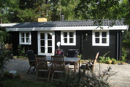 Sommerhus ved Danmarks bedste badestrand - Væggerløse