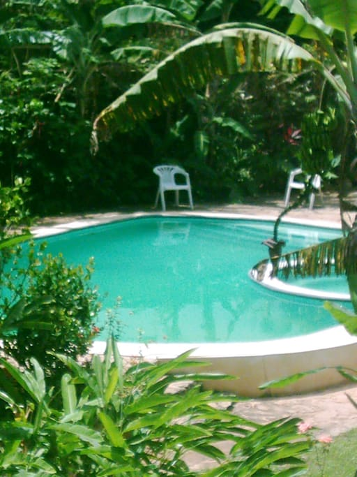 Pool with jaccuzi and terrace