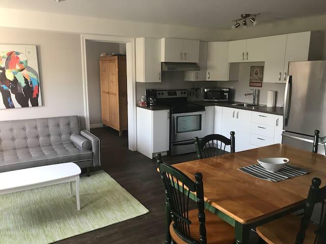 Fabulous Bic - large housing - 11
