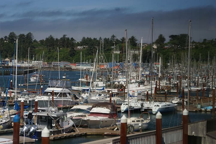 45 minutes south of us is Newport with its beautiful marina.