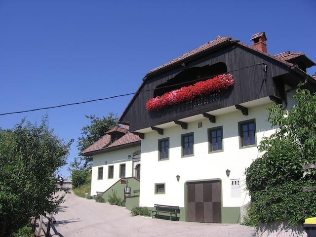 Private rooms Vihra, near Ljubljana - Topol pri Medvodah - Bed & Breakfast