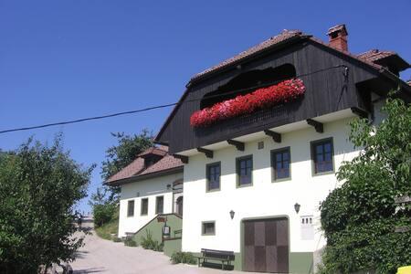 Private rooms Vihra, near Ljubljana - Topol pri Medvodah - Pousada