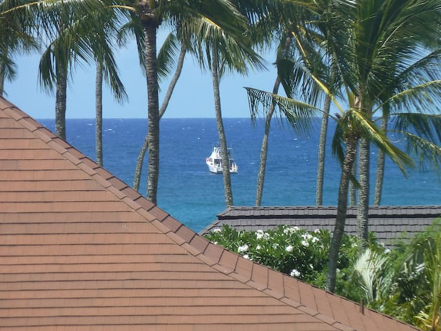 Distant view of ocean from the Lanai