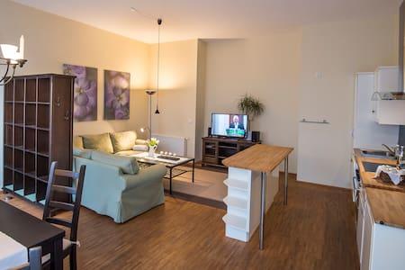 Appartements Residenz Jacobs - Ballenstedt - วิลล่า