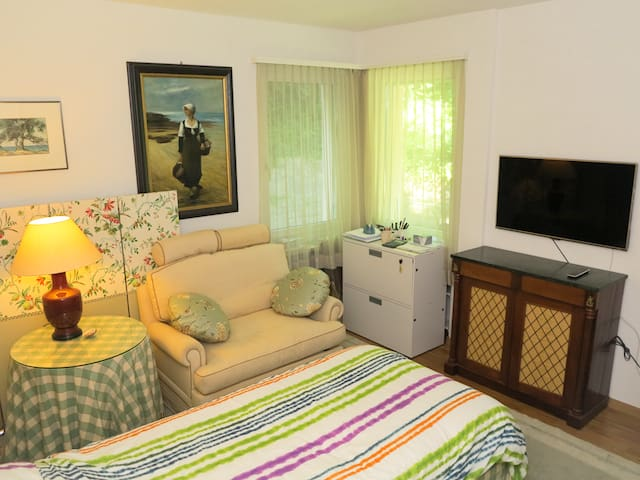 Large single room in lovely apartment with garden - Zollikon - Apartment