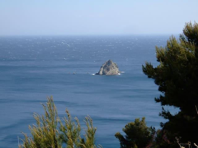 studio rez de jardin prés de la mer