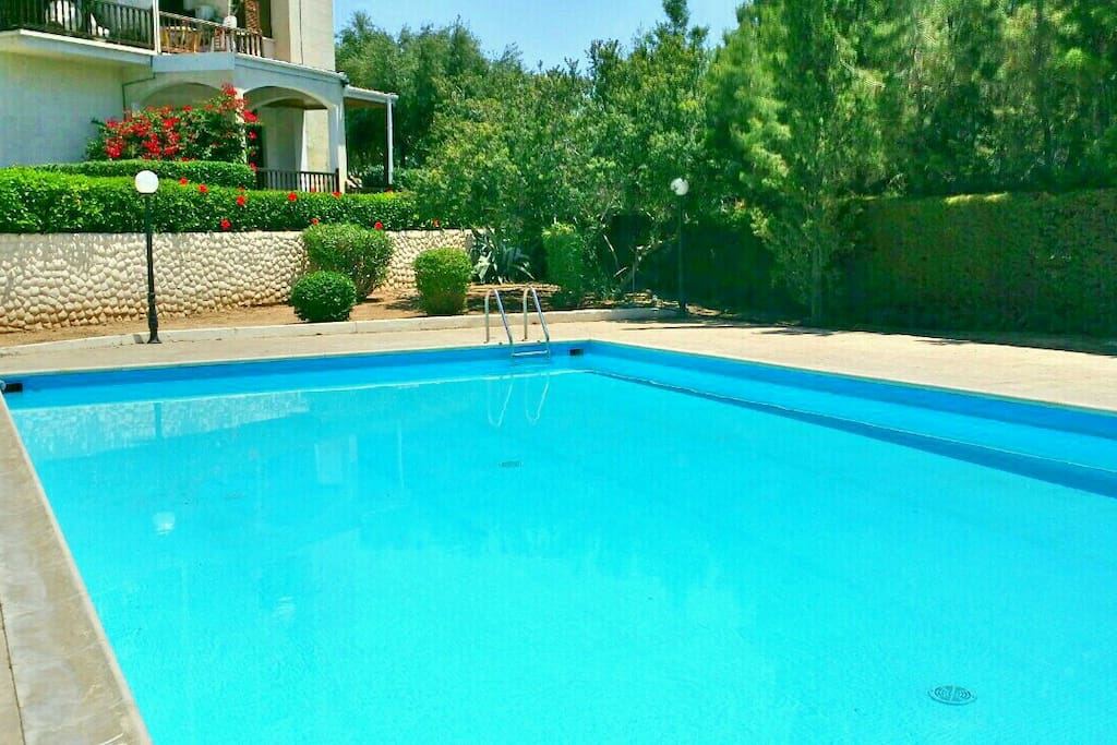Seaview 2 bedr pool to beach 100m apartments for rent - Whitefish bay pool open swim hours ...