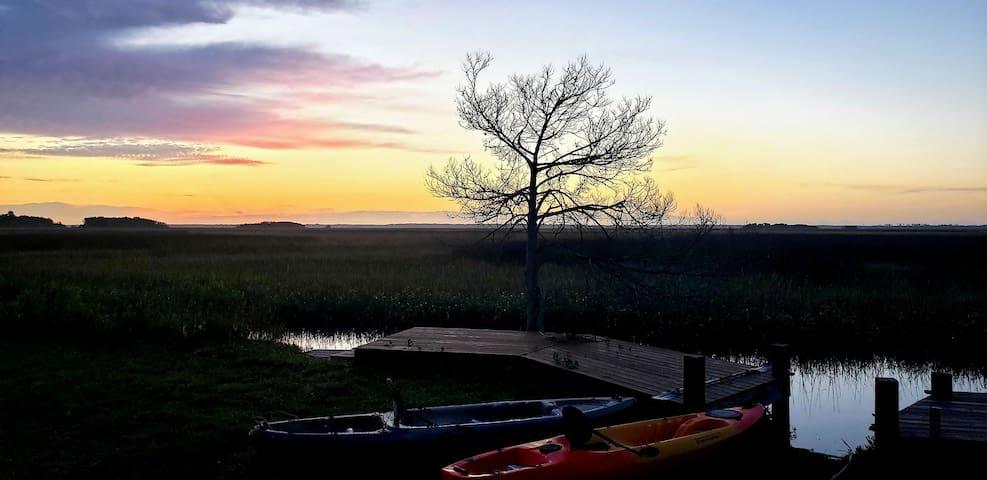 Marsh-front SERENITY high-tide kayak & nature fun