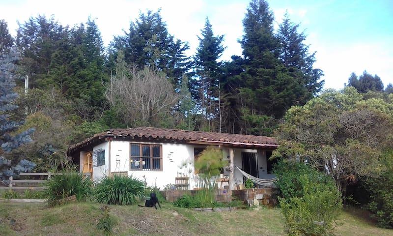 La Guaca - Casa de Barro