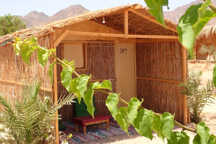 Bedouin Star single traditional room