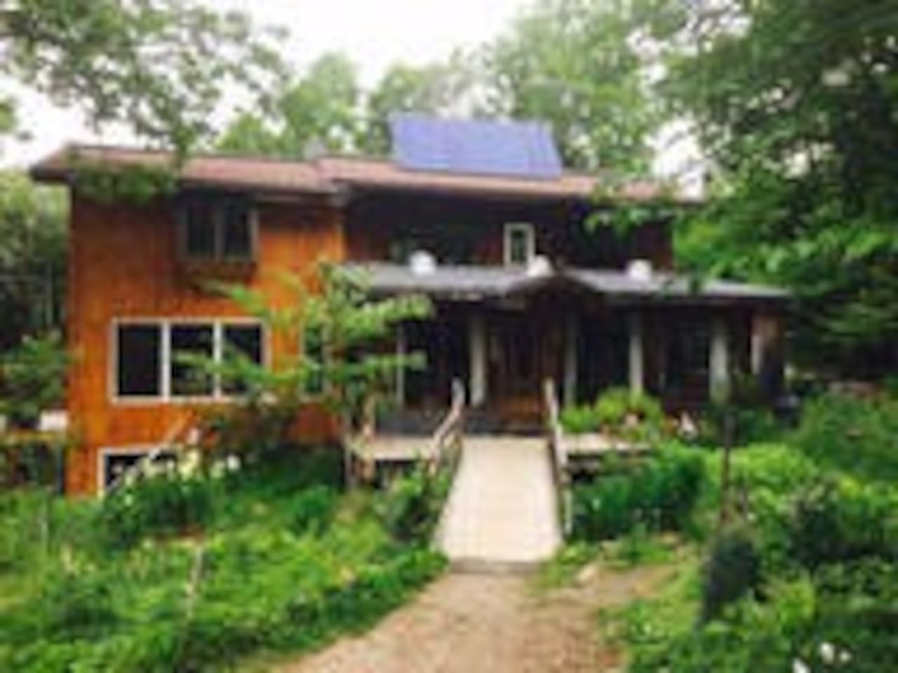 Solar Living Emerson Brook Forest 3