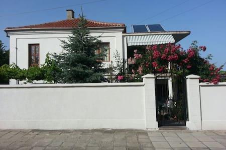 Апартамент за гости Алберчи арт