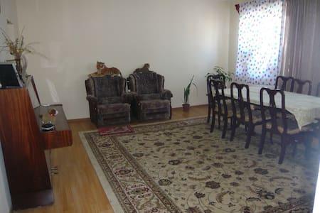 Aparment for Rent - Gyumri - Leilighet