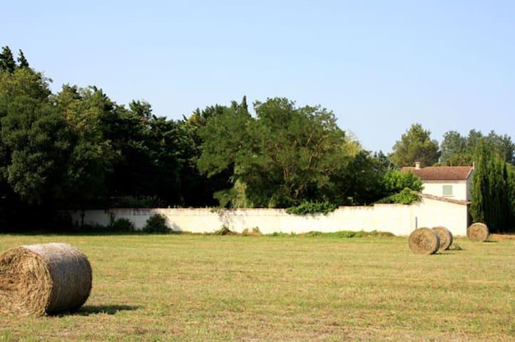 MAISON DES INVITES-CHAMBRE D'HOTES - Pernes-les-Fontaines - Bed & Breakfast