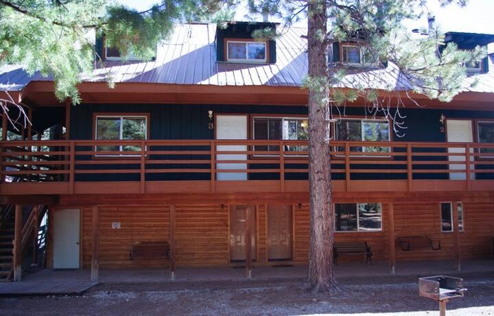 Lodge Suite #2 - Pinewoods Resort