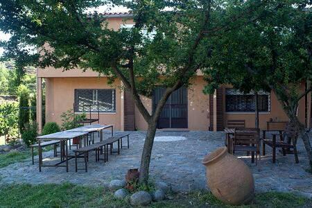Casa Saranam en Jaraiz de la Vera - Jaraíz - Hus