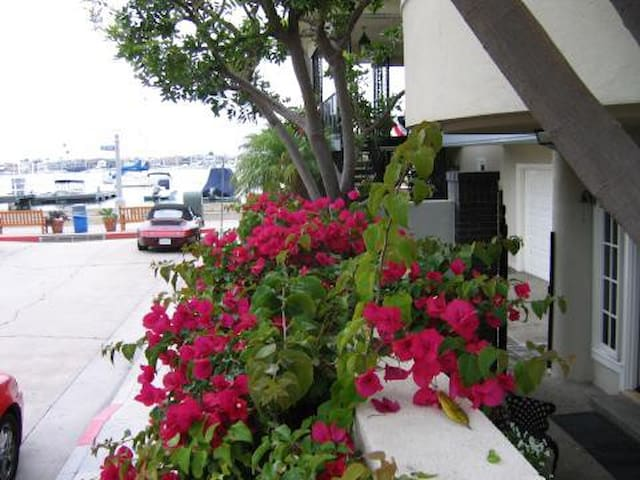 Balboa Island Bayfront Apartment - Newport Beach - Apartament