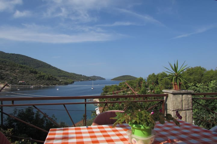 Sea view apartment with terrase VL