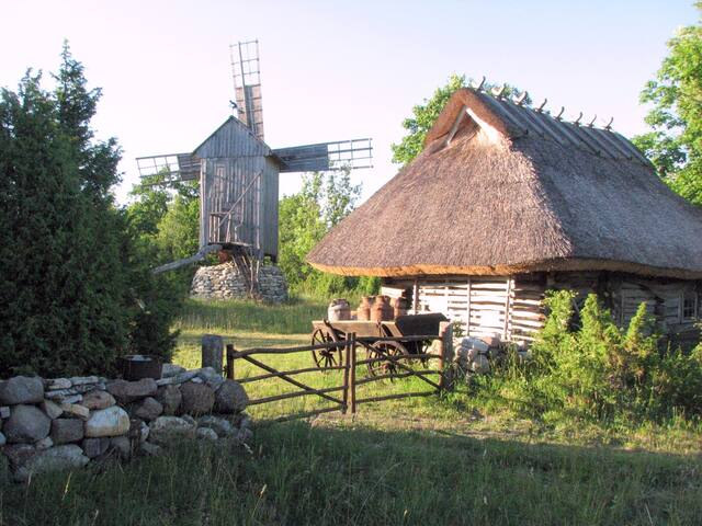 A very nice little farmstead. Viking 3