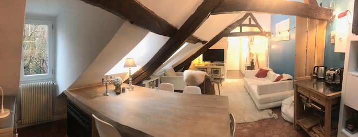 Loft in Saint-Germain-des-Prés - Paris