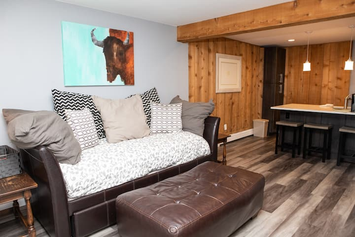 Newly Renovated, Fully furnished, Assigned Parking Space, On Complimentary Shuttle Route