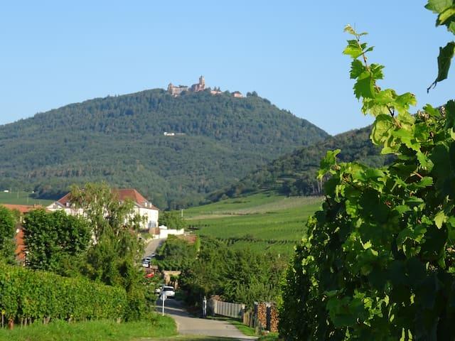 Gite *** Au pied du château du haut koenigsbourg