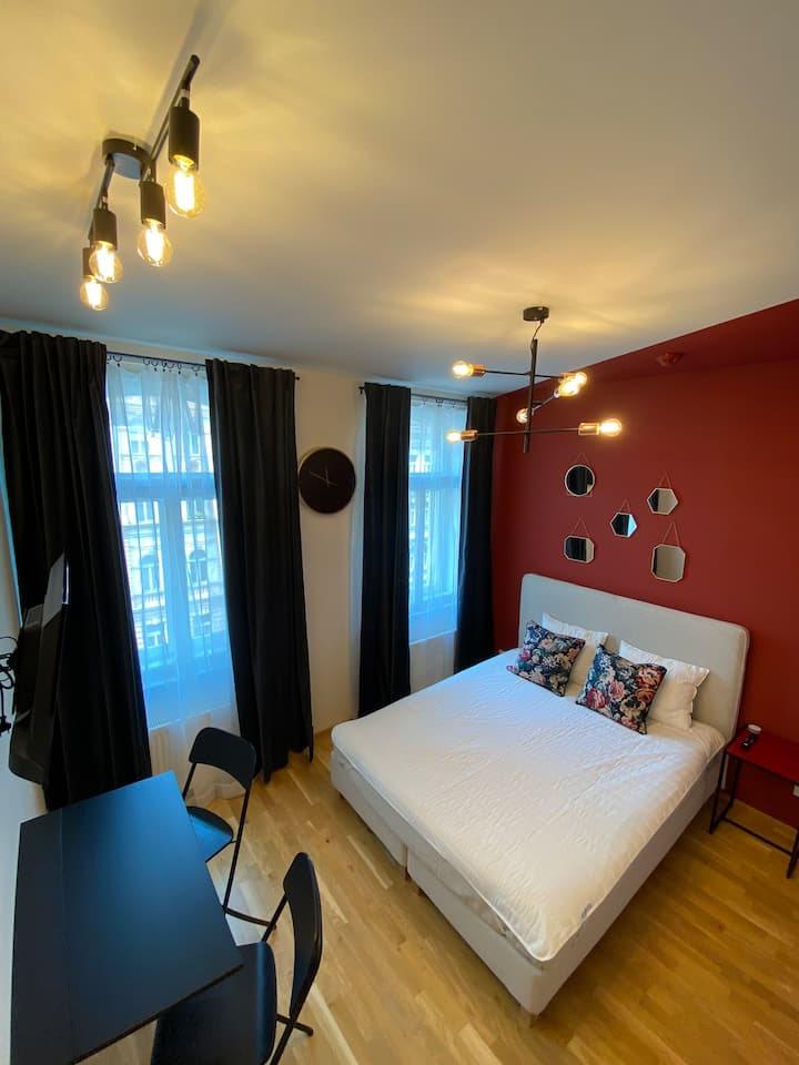 Stylish studio in historical building - Prague 2