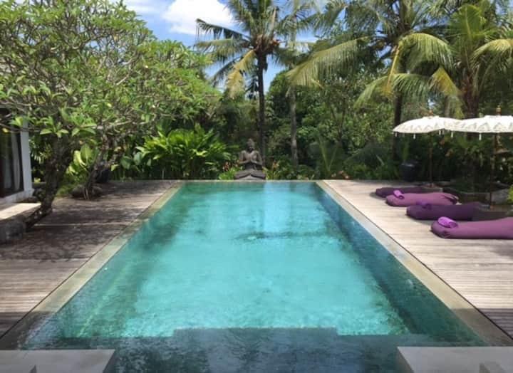 Tempat Damai Lux 3Bed Villa,Rice Field View,Canggu