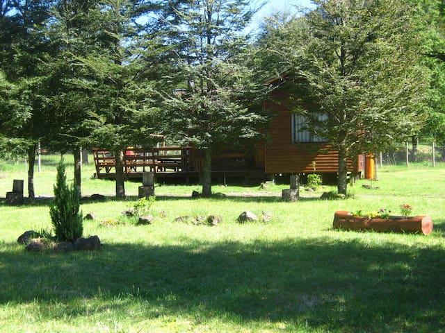 CABURGUA HOUSE PRIMAVERA EN EL SUR