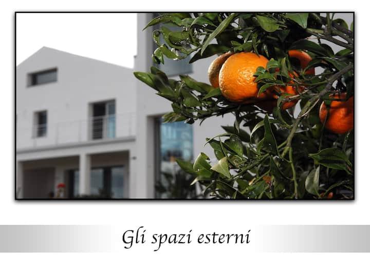 Scent of orange blossom