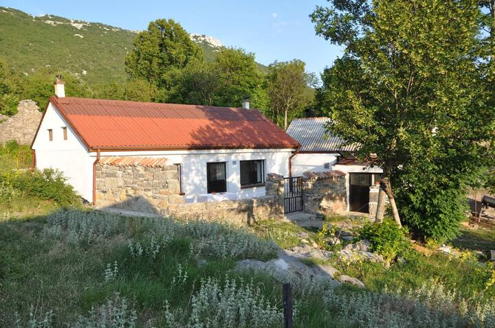 Two Bedroom Peaceful authentic remote cottage, in the countryside in Štokići