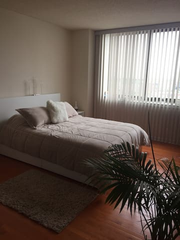 Spacious private bedroom w/pr. bath - Falls Church - Apartment