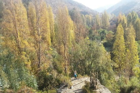 AMAZING PLOT IN THE COUNTRYSIDE AND MOUNTAINS - San Esteban - 牧人小屋