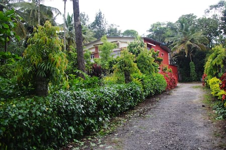 Coffee Estate Homestay-Ashirwad Estate Homestay