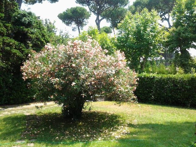 Charming Tuscan Villa - Форте дей Марми - Вилла