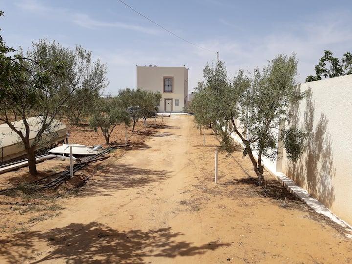 Maison des oliviers