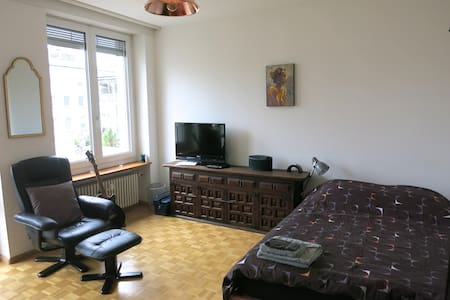 Calm, private apartment in center - Basel - Huoneisto