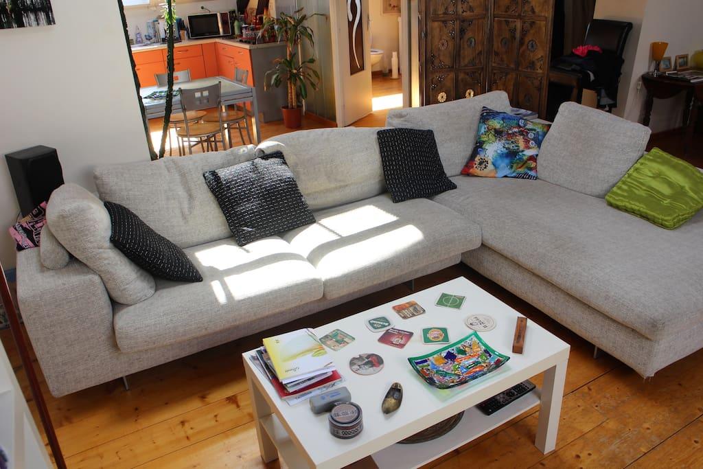 espace salon avec grand canapé roche bobois