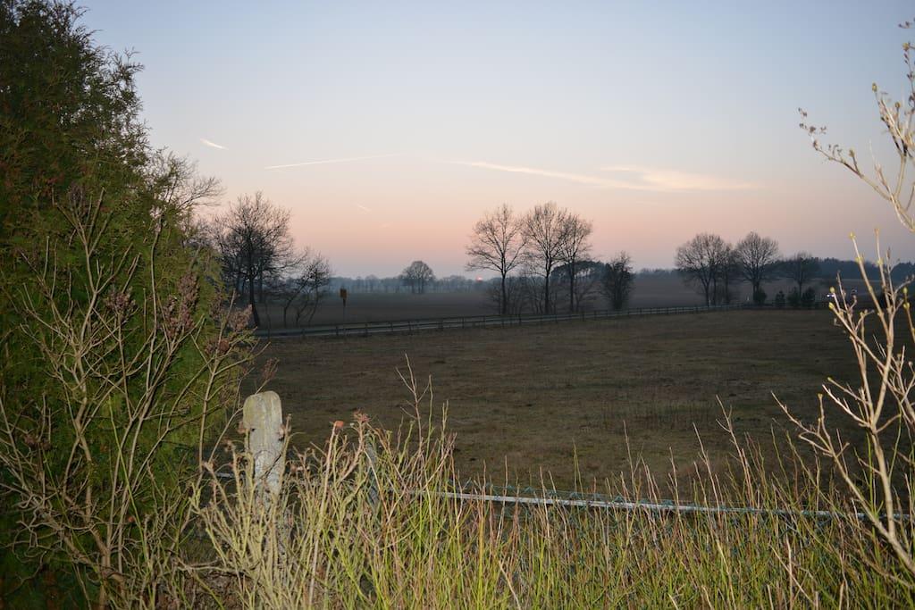 Blick vom Grundstück in die Weite