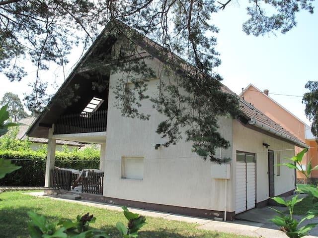 Fantastic House Ashore  - Balatonfenyves - Apartment