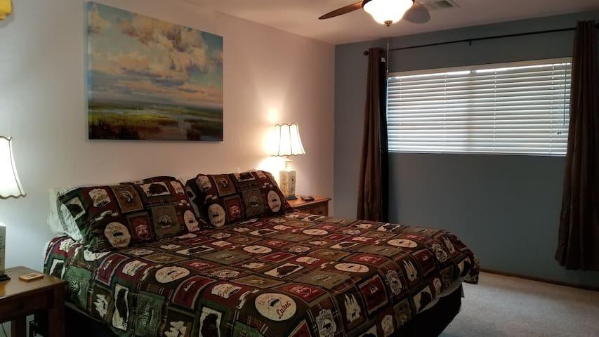 Master bedroom with king bed, closet, tv and en suite bathroom.