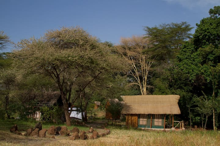 Kili Springs Camp (Full Room and Board)