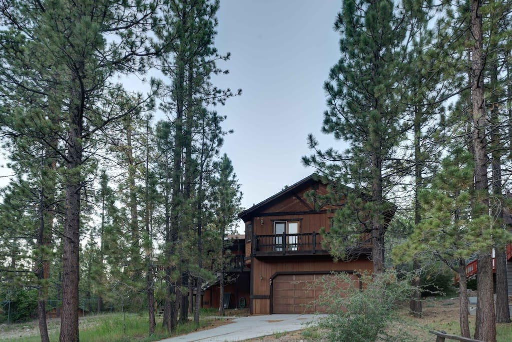 Lovely big bear cabin cabins for rent in big bear lake for Big bear village cabins